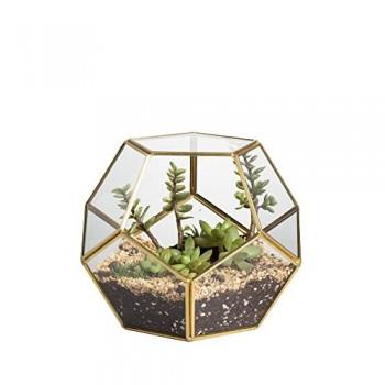 Effacer-pentagone-dodcadre-en-verre-gomtrique-Terrarium-Plante-pour-terrarium-0